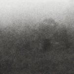Vestige – EP「Bruits de Chênes & d'Ossements」リリース